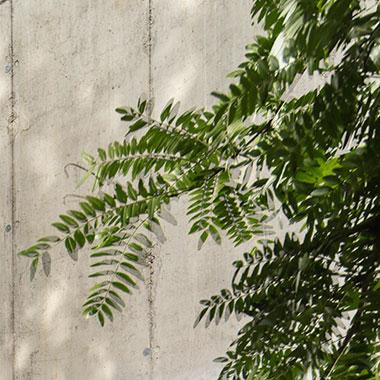 Neue Fotos Gartenhaus